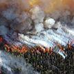 Пожары на Гран-Канарии не утихают: эвакуированы более 9 тысяч жителей и туристов