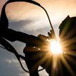 Белорусские биатлонистки завоевали серебряные медали в эстафете на этапе Кубка мира в Чехии