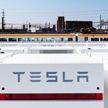 Илон Маск назначил себя «технокоролем» Tesla, а финдиректора компании – «мастером над монетой»