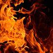 Более 40 пожаров за сутки потушили спасатели в Беларуси: семеро погибших