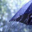 Сильные дожди и грозы ожидаются 4 июля в Беларуси, но будет тепло