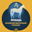 Лошадь: Китайский (Восточный) гороскоп, характеристика знака, совместимость