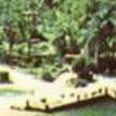 Американец на время карантина поселился в закрытом парке Disney World