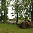 Грозы, ливни и сильный ветер: по юго-востоку Беларуси сохраняется оранжевый уровень опасности