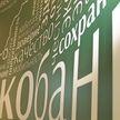 Первый ЭкоБанк появится в стране: Белинвестбанк начинает масштабную трансформацию