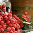 В канун осеннего равноденствия под Минском провели древний обряд «Багач»