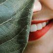Самые полезные продукты для зубов перечислил стоматолог