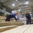 Делегация из США посетит предприятия концерна «Беллесбумпром»