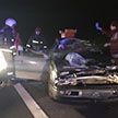 Автомобиль и лось столкнулись под Минском: пострадал пассажир