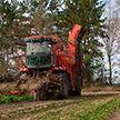 Собрать урожай нынешний и подготовить почву для урожая будущего. Брестские аграрии завершают последние работы на полях