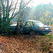 Беременная женщина погибла в Щучинском районе – она врезалась на автомобиле в дерево