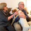 Семейная пара нашла пропавшего пса в тюрьме