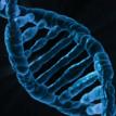 Ученые предложили ответ к загадке появления жизни на Земле