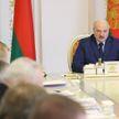 Лукашенко: так называемая диктатура и порядок показали свою эффективность