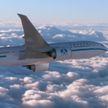 Мир объявляет бойкот Boeing 737 MAX: после катастрофы в Эфиопии, авиакомпании массово отказываются использовать эту модель