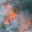 Масштабные пожары в Австралии: пламя перекинулось на Национальный парк Баниип