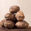 Чем опасен старый картофель, рассказал врач
