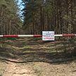 Запреты на посещение лесов введены в 25 районах Беларуси