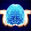 Ваш мозг надолго останется молодым, если будете выполнять это