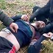 ГПК: польские силовики выбросили группу беженцев, один человек был почти без одежды и в бессознательном состоянии