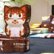 Дворец-музей Гугун представит книги о кошках с картинками