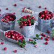 5 суперполезных зимних продуктов, в которых много витаминов. Они точно должны быть в вашем холодильнике!
