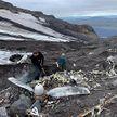 В Исландии обнаружили самолет, который врезался в ледник 76 лет назад