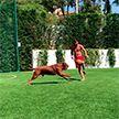 Месси играет с мячом даже в отпуске (Видео)
