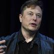 Илон Маск впервые вошел в топ-10 богатейших людей планеты по версии Forbes