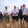 Александр Лукашенко посетил Миорский район