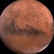 Ученый рассказал, кого могут встретить люди на Марсе