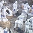 Вслед за коронавирусом. В Японии в десяти префектурах зафиксировали вспышку птичьего гриппа