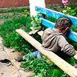 Нетрезвый мужчина провалился и застрял в деревянной скамейке в Гомеле
