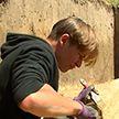 Артефакты V века нашли студенты во время раскопок в Могилевской области