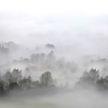 Сильные туманы в Беларуси сохранятся ещё несколько часов