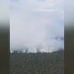 Лесной пожар в Пуховичском районе удалось ликвидировать