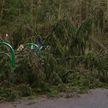 Гроза и штормовой ветер: специалисты всю ночь устраняли последствия непогоды