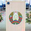 У мониторинговой группы МПА СНГ нет замечаний к ходу голосования на выборах Президента Беларуси