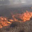 Пожароопасный сезон: как МЧС тушит и предотвращает возгорания