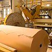Выпуск бумаги-основы для декоративных облицовочных материалов начал завод в Шклове