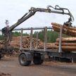 В лесную отрасль Беларуси с начала года привлечено более Br200 млн инвестиций