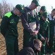Студотряды Белорусской сельхозакадемии помогают в посевной в Могилевском районе: как работается ребятам на земле?