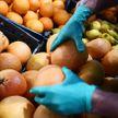 Вирусолог оценил шансы заразиться коронавирусом через продукты в магазине