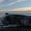 Выброшенный на берег горбатый кит спасён в Аргентине