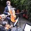 Оперный театр в Барселоне дал первый концерт для домашних растений