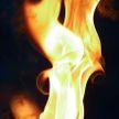 Пожар на конюшне в Шарковщинском районе: погибли две лошади