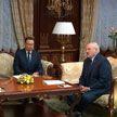Александр Лукашенко встретился с региональным директором ВОЗ Хансом Клюге