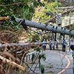 Тайфун в Японии: женщину бросило порывом ветра в стену, она погибла