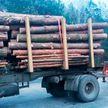 Лесовоз, перевозивший брёвна с нарушением правил, остановили сотрудники ГАИ