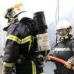 Более 50 животных погибли при пожаре во французском зоопарке